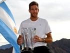 Del Potro stuns top seed Federer, wins Indian Wells title