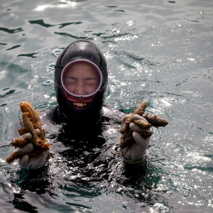 For South Korea's youngest 'sea women', warming seas mean smaller catches