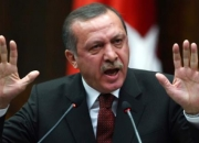 Erdogan rebuffs EU on terror laws, says Turkey 'will go our way'