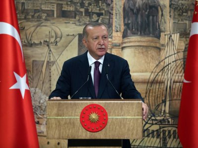 Erdogan calls French separatism bill 'guillotine' of democracy