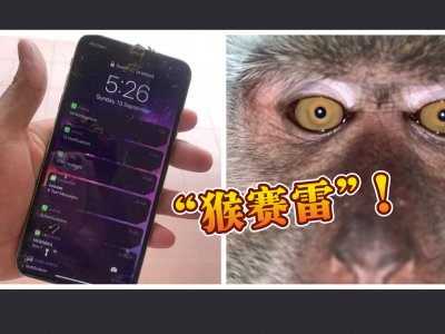 """手机在家""""失踪""""树林寻获 """"小偷""""自拍照笑翻网民!"""