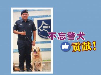 """不舍警犬""""伙伴""""离世! 警官:失意时它总会陪伴我"""