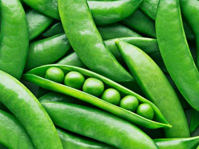Why the humble pea is the ingredient of the future
