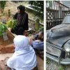 Malaysian cat Nana visits former owner's grave every morning for two years now