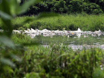 Dimethyl disulfide cause of Sungai Batang Benar pollution