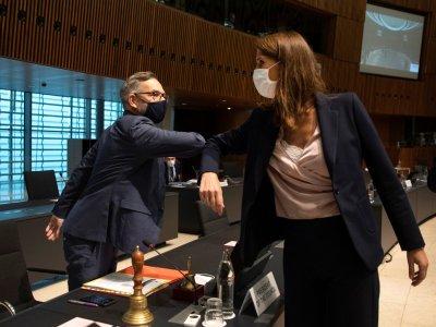 均曾出席欧盟会议!奥地利和比利时外长相继染疫