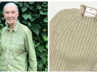 'I wore this in Malaysia two years ago': Primatologist Jane Goodall recycles beloved shirt at H&M to reduce waste (VIDEO)