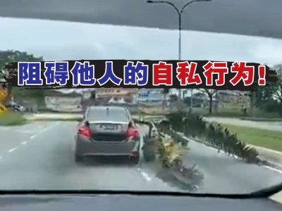 香蕉树横跨轿车载法吓坏人!警方找出肇祸男子开罚单
