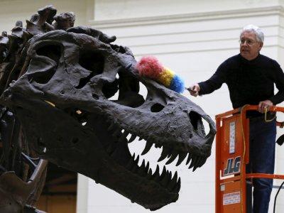 Slow and steady or a big spurt? How to grow a ferocious dinosaur