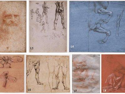 A world of DNA and bacteria found on Leonardo da Vinci drawings