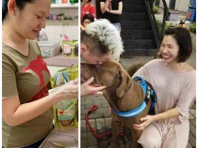 Selangor dog food supplier, animal communicator raise funds for Semenyih animal shelter in danger of closing (VIDEO)