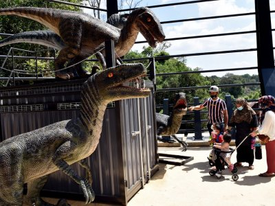 Covid: Melaka zoo needs RM600,000 monthly to cover operating expenses