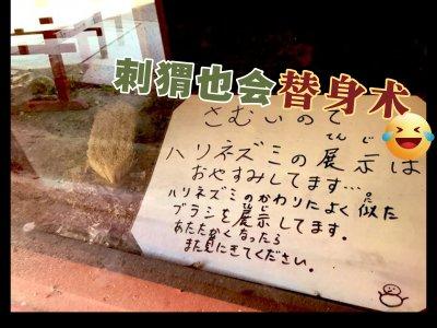 """低温来袭担心刺猬着凉! 日本动物园用""""刷子替身""""爆红"""