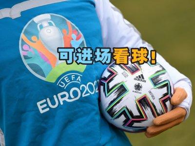意政府亮绿灯 欧国杯罗马赛区球迷可入场观战!