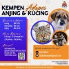 Adopt, don't buy: DBKL resumes pet adoption drive in hopes to find loving homes for strays