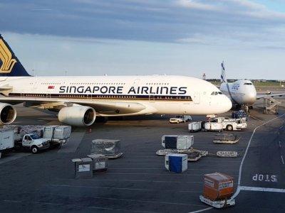 飞行时间只有60分钟!这是新航最短程的A380航班