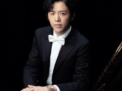 China's music and arts associations distance themselves from Chinese pianist Li Yundi following arrest for procuring sex services