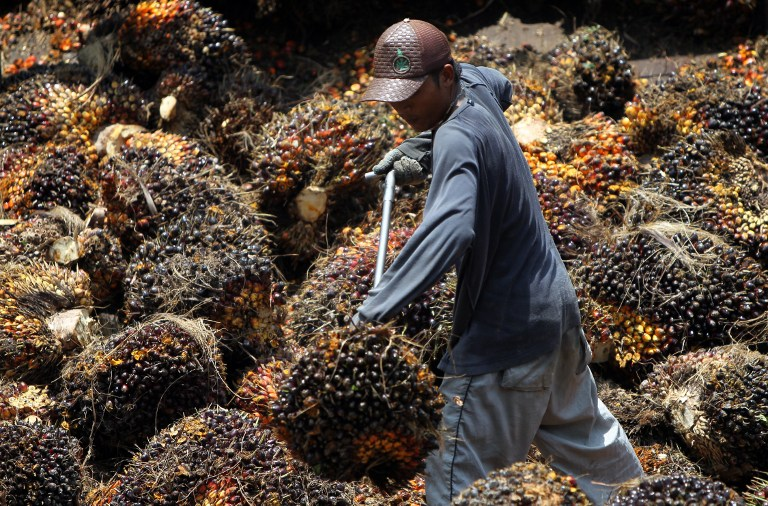 Implementation of the B10 biodiesel programme will utilise crude palm oil from Malaysia's stockpile, says Datuk Amar Douglas Uggah Embas today. — File pic