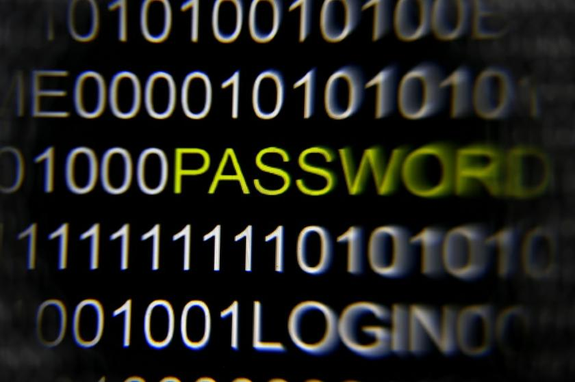 File picture illustration of the word 'password' pictured on a computer screen, taken in Berlin May 21, 2013. — Reuters pic