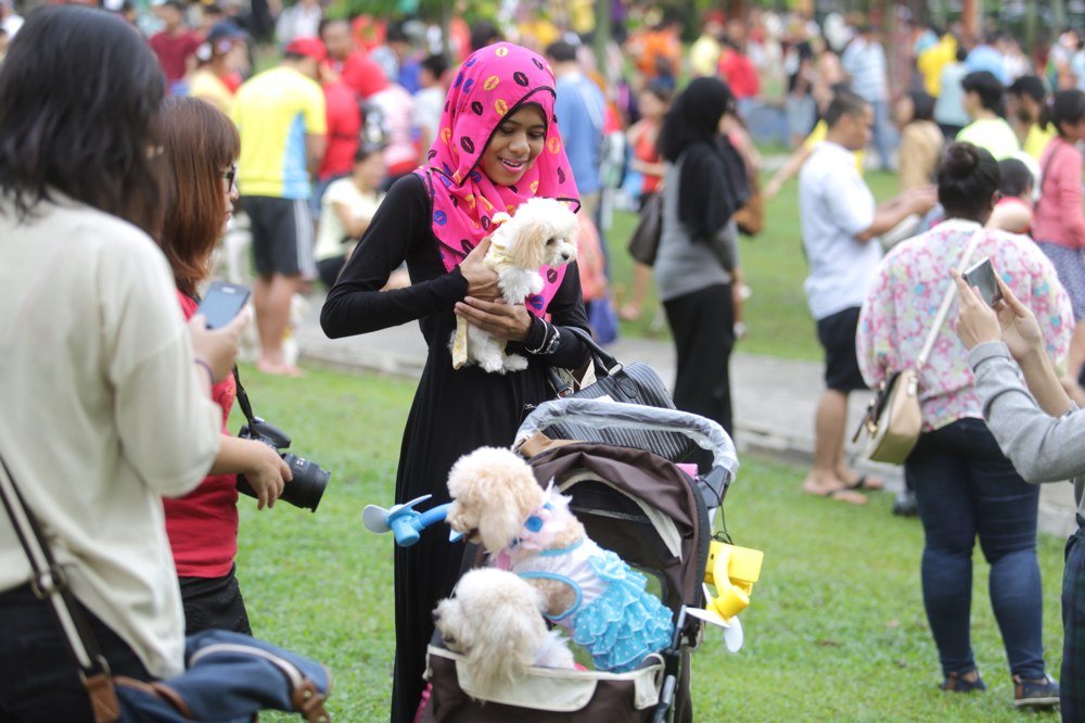 Muslims and non-Muslims animal lovers attend the 'I wanna to touch a dog' event in Central Park, Bandar Utama, October 19, 2014. — Picture by Choo Choy May