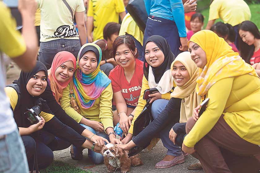 A group of Muslim women get acquainted with a dog at the 'I want to touch a dog' event at 1Utama's central park on Sunday. — Picture by Choo Choy May