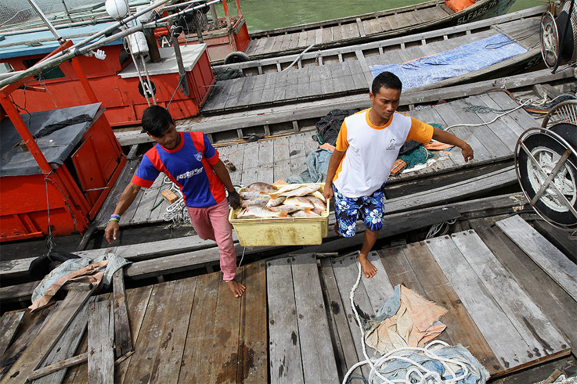 Fisheries Dept: Vessel Modernisation Programme offers financing to fishermen  | Money | Malay Mail