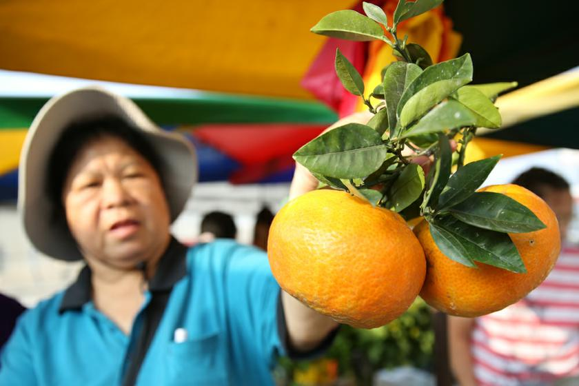 A fruit seller setting up her stall at the market Puchong Jaya Market, Kuala Lumpur, January 26, 2014. Malaysia had a bright future when it comes to marketing halal products in China due to demand from the Muslim community there, particularly in Xian. — Picture by Saw Siow Feng