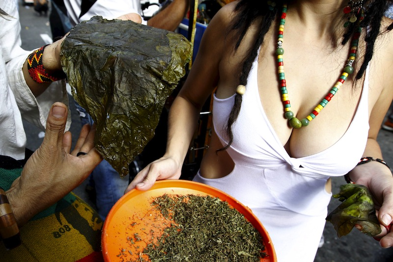 A man shows a sheet of snuff to prepare marijuana during a demonstration in support of the legalization of marijuana in Medellin, May 2, 2015.— Reuters pic