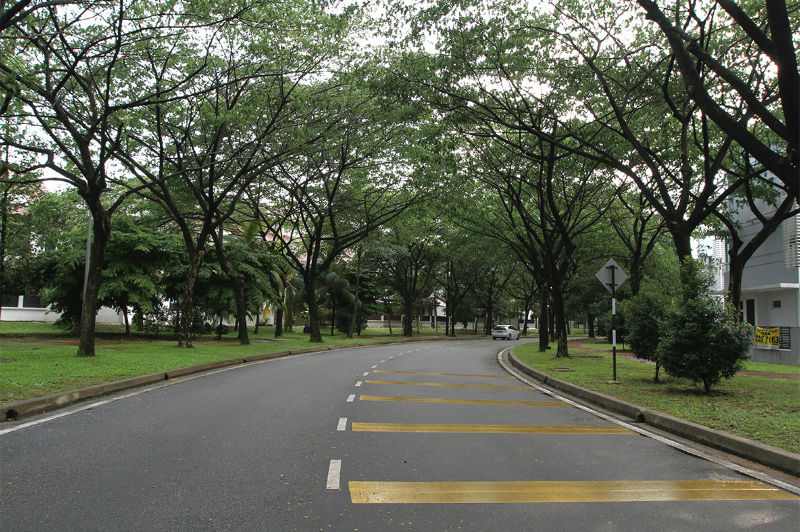 Picture shows a well-maintained road amid beautiful landscaping in Shah Alam.