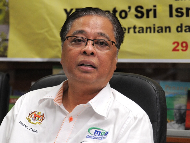 Minister for rural and regional development Datuk Seri Ismail Sabri Yaakob said MARA would consider applications by non-bumiputra traders for its tech mall dubbed as 'Low Yat 2'. — File pic