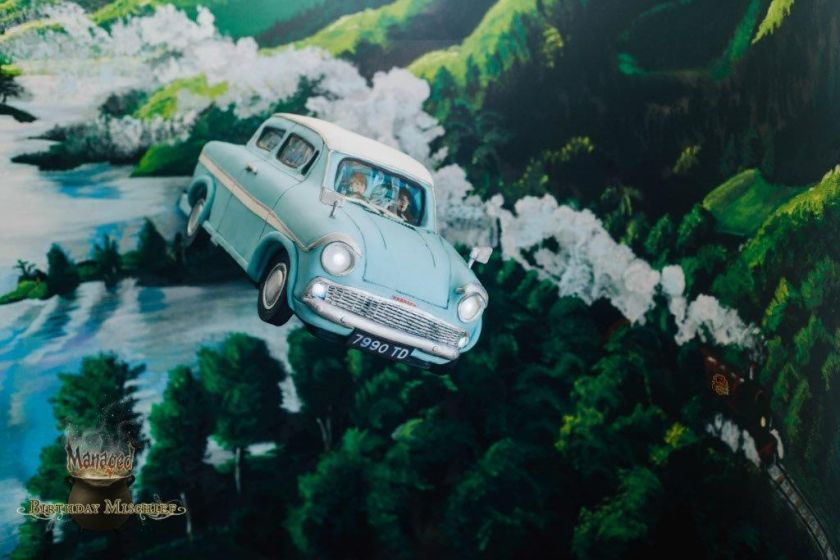 Alex Narramore's cake is modelled after Arthur Weasley's Flying Ford Anglia. ― Picture by Alex Narramore