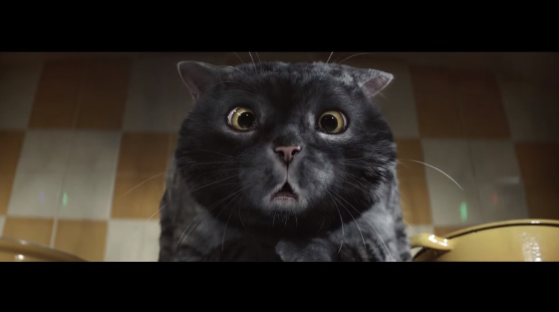 Mog the cat is seen in this screenshot taken from Sainsbury's Christmas 2015 ad featuring the beloved feline in a new adventure.