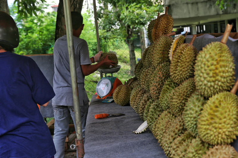 File picture of a roadside stall selling durians in Taman Kinrara, May 24, 2016. — Picture by Saw Siow Feng