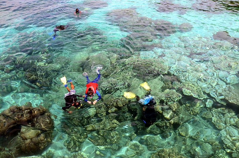 Tourists snorkel in the waters of Pulau Payar in Langkawi. Pulau Payar is one of three marine parks popular with tourists, the other two being in Terengganu and Pahang. — Bernama pic