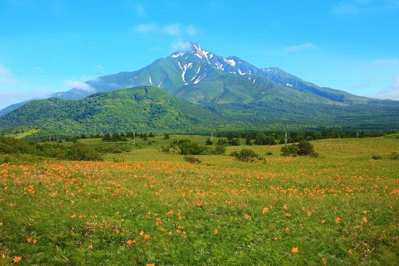 Mount Rishiri's steep volcanic ridges tower over a field of wildflowers off the coast of Hokkaido, Japan.