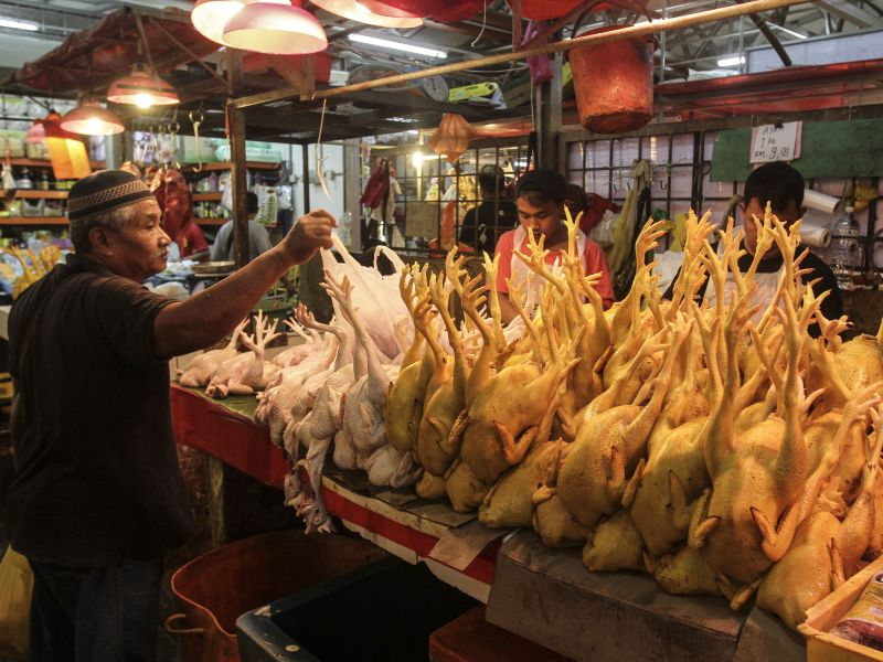 Among measures proposed included giving subsidies to chicken farm operators. ― Picture by Yusof Mat Isa