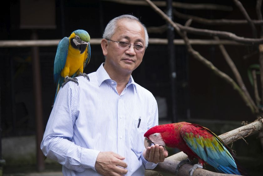 Dr Gino Ooi started rescuing injured birds as a hobby before he opened the Penang Bird Park. — Picture by KE Ooi