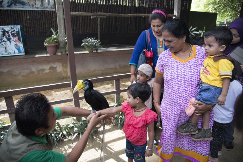Visitors pose with a hornbill at the Penang Bird Park. — Picture by K.E.Ooi