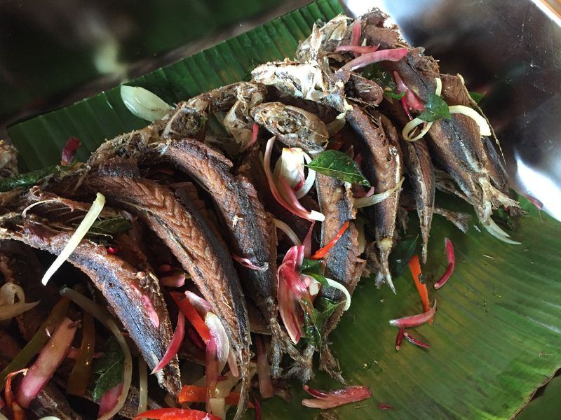 Fried or braised, the basung fish is a tasty dish that can be eaten whole if deep-fried properly.