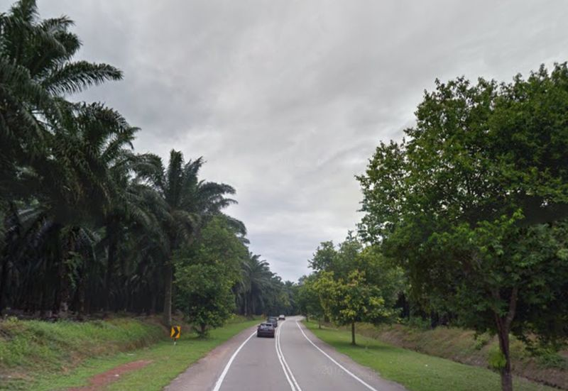 Picture shows the highway to Ledang district, Johor. — Google Maps screenshot