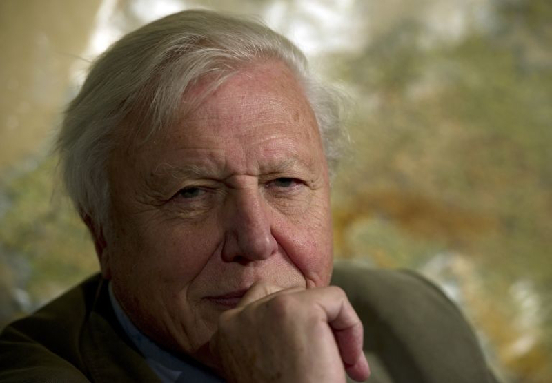 TV naturalist David Attenborough, in a new documentary, gives his starkest warning yet for humanity to safeguard species from mass extinction for the sake of our own survival. — AFP pic