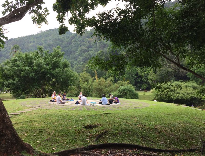 A group of people are seen meditating in the open area at the Penang Botanical Garden. ― Picture by KE Ooi