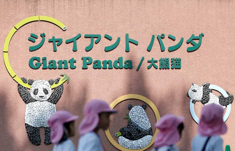 Kindergarten children walk in front of a giant panda house at Ueno Zoological Park in Tokyo May 19, 2017. — Reuters pic