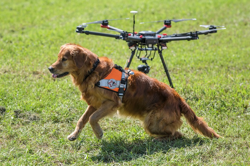 The Department of Civil Aviation clarified that not all operators of drones or unmanned aerial vehicles (UAV) are required to obtain approval from the department. — AFP file pic