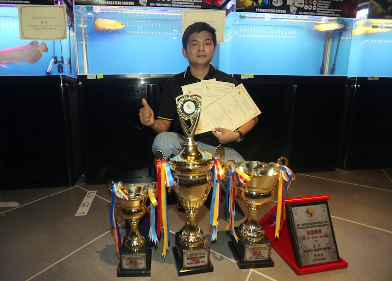 William Hoe won the title for the Best Future Young Fish and Crossback Arowana (Golden Base) small fish competition and was second runner-up in the Red Arowana small fish.