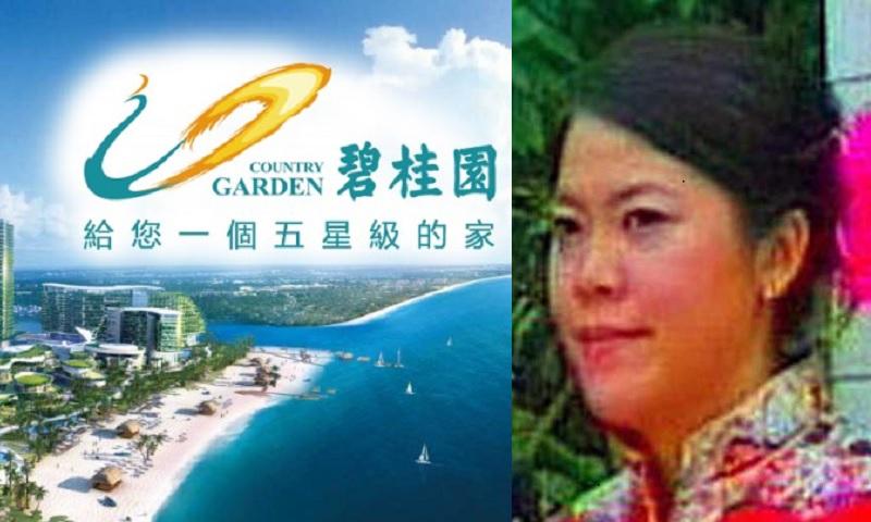 碧桂园副主席杨惠妍也是该公司最大的股东。-图取自网络,M中文网制图-