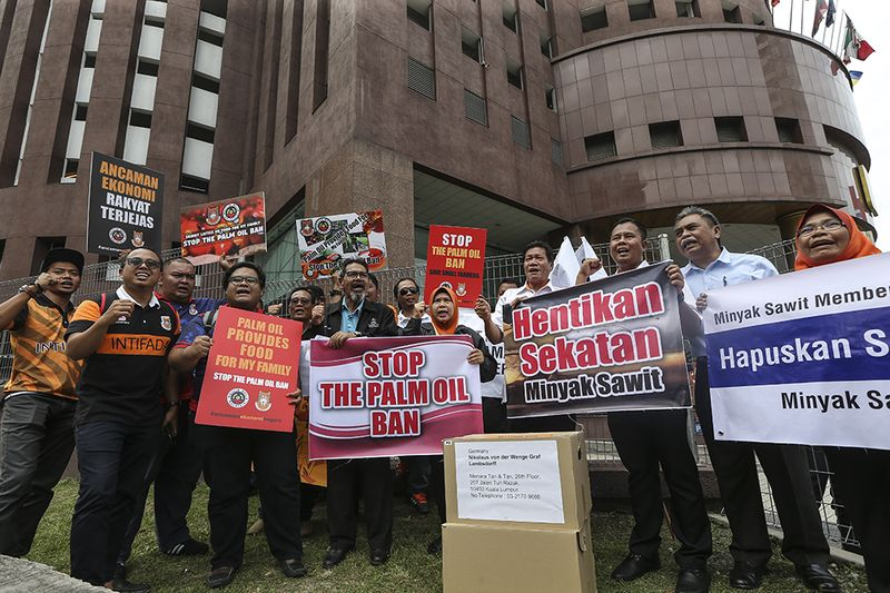 Malaysian oil palm smallholders gather to protest against Europe's campaign to ban palm biofuels, at the EU Embassy in Kuala Lumpur, 16 January 16, 2018. — Pix by Azneal Ishak