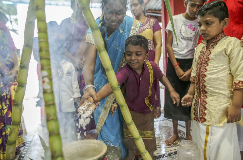 Children take part in  the Ponggal Festival at the Sri Maha Kala Muneswarar temple in Sentul January 13, 2018. — Picture by Azneal Ishak.