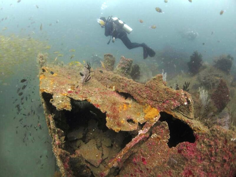 An Australian Institute for Maritime Archaeology conference in Australia recently revealed that 48 naval shipwrecks across Southeast Asia, mainly around Malaysia and Indonesia, were plundered by the syndicate. — Bernama pic