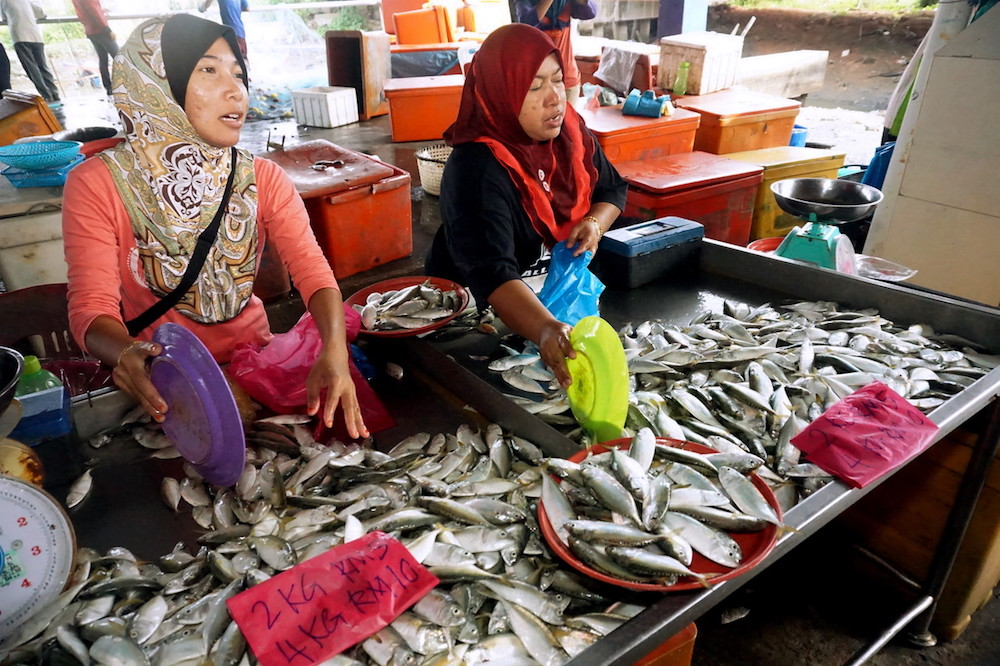 Mohamed Idris called on Putrajaya to amend the Animal Feed Act 2009 to include elements of halal in the preparation, processing, production and handling of animal feed. — Bernama picture